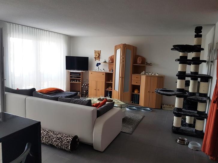 Neue 4.5 Zimmer in Gränichen 3