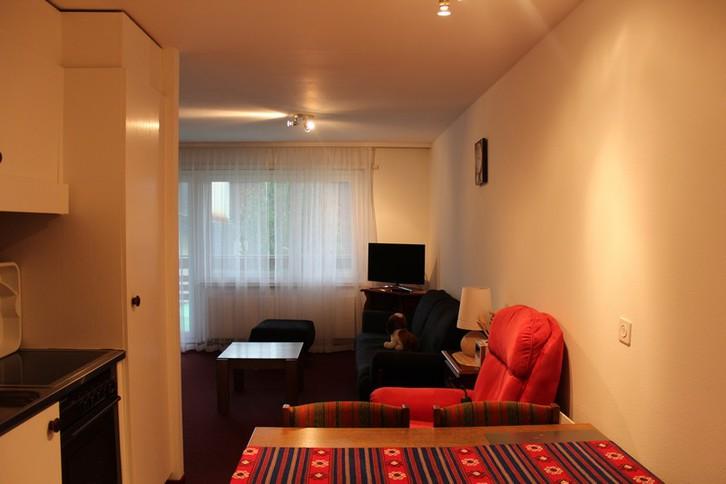 CLABINA Studiowohnung mit sehr grosser Südterrasse und schönem Ausblick 2