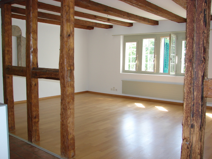 zentrale studiowohnung 4500 solothurn ich suche einen nachmieter f r meine gem tliche zentrale. Black Bedroom Furniture Sets. Home Design Ideas