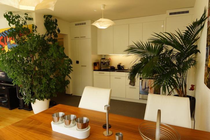 Helle und moderne, 3 ½ Zimmer, 62m², 8006 Zürich 4
