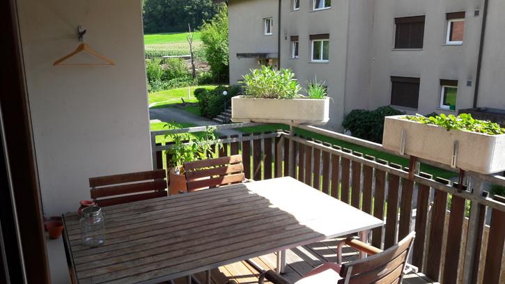 g nstige 3 5 zimmer wohnung im steuerg nstigen birmensdorf 8903 birmensdorf suche ab. Black Bedroom Furniture Sets. Home Design Ideas
