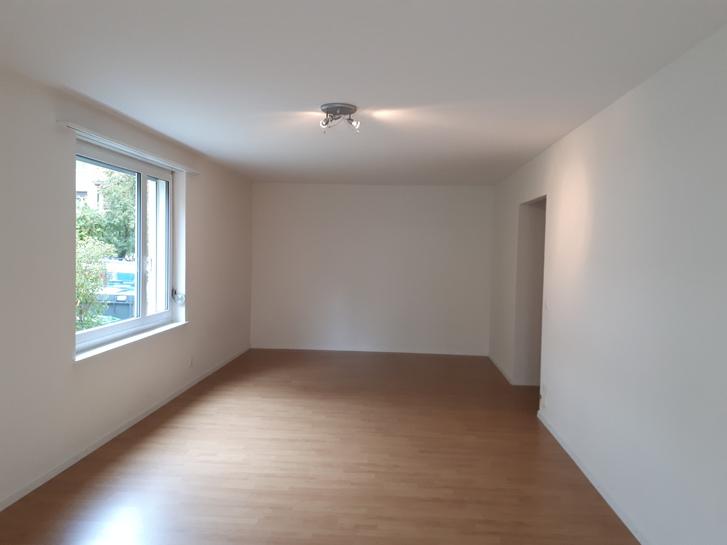1.5 ZI-Wohnung EG mit Terrasse 4