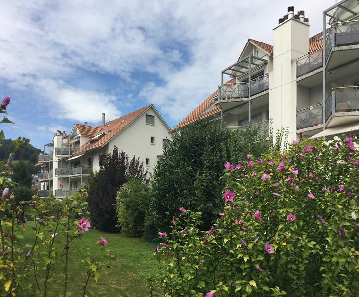 Lichtdurchflutete Familienwohnung mit 3 Balkonen in Weiningen ZH 8104 Weiningen