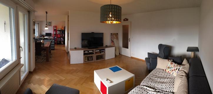 3.5 Zimmer-Wohnung (ca. 100m2 mit Balkon) 8052 Zürich