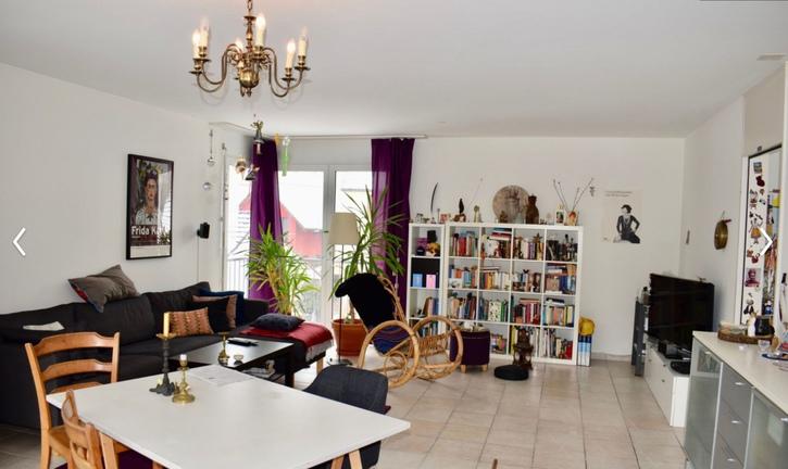 Helle grosse  Maisonette Wohnung mit Wintergarten und Dachterrasse an der Ergolz 4