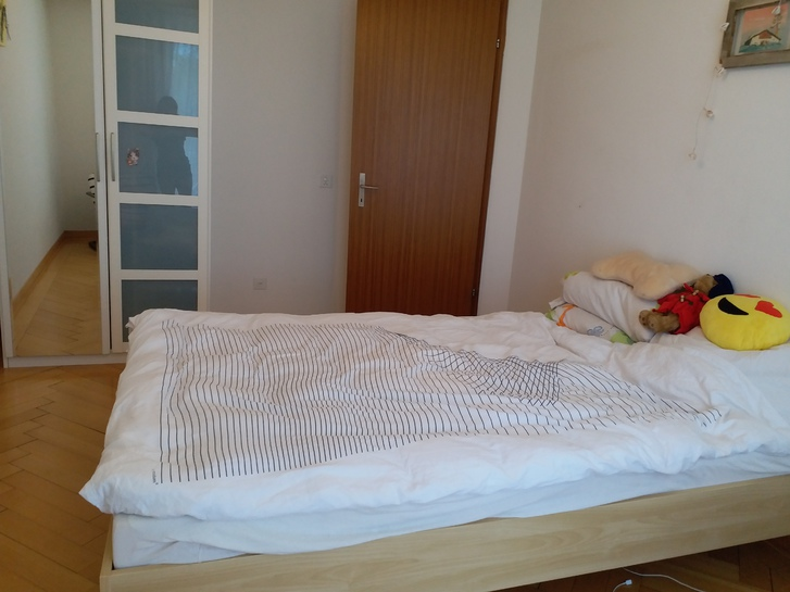 3.5 Zimmer Wohnung in Luzern 2