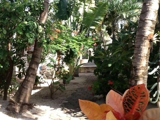 Vier Wohnvillas in tropischem Garten - Playa del Carmen, Mexiko 4