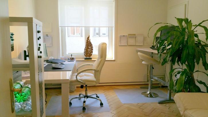 Schöner Büroraum in Bürogemeinschaft (Zürich-Wollishofen) zu vermieten! 8038 Zürich