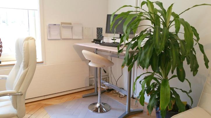 Schöner Büroraum in Bürogemeinschaft (Zürich-Wollishofen) zu vermieten! 3
