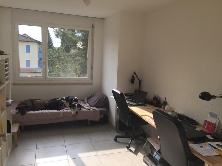 Helle Wohnung mit toller Aussicht 4
