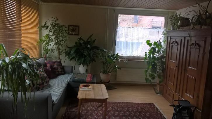 4 1/2 Zimmer Wohnung in Lotzwil 2