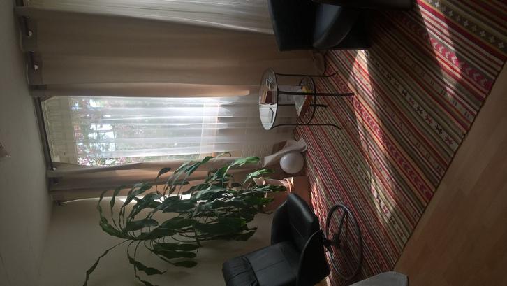 4 1/2 Zimmer Wohnung in Lotzwil 3