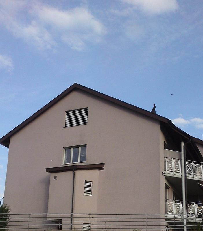 Grosses 8-Zimmer Eckhaus in 6033 Buchrain 6033 buchrain