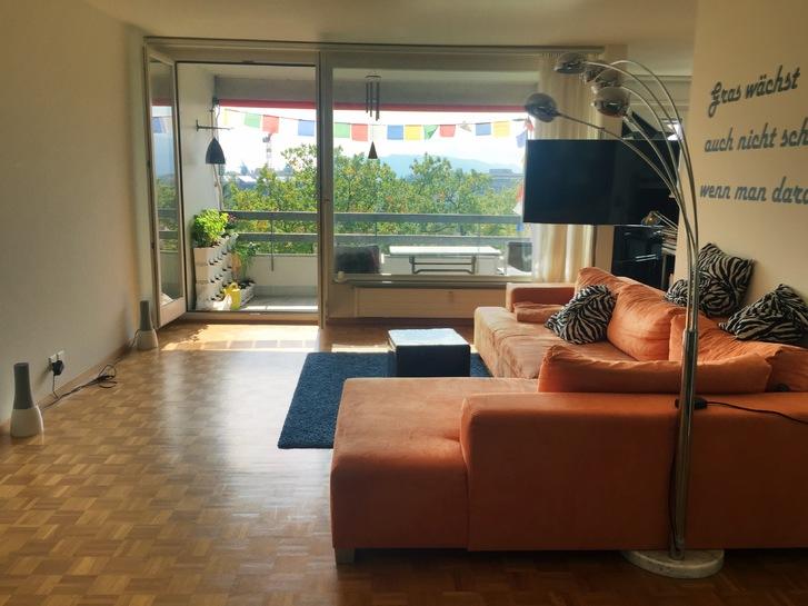 4 Zimmer mit Alpenpanorama, im 7., obersten Stock 3006 Bern