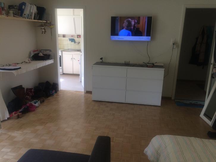 Grosse, helle 1 Zimmer Wohnung  2