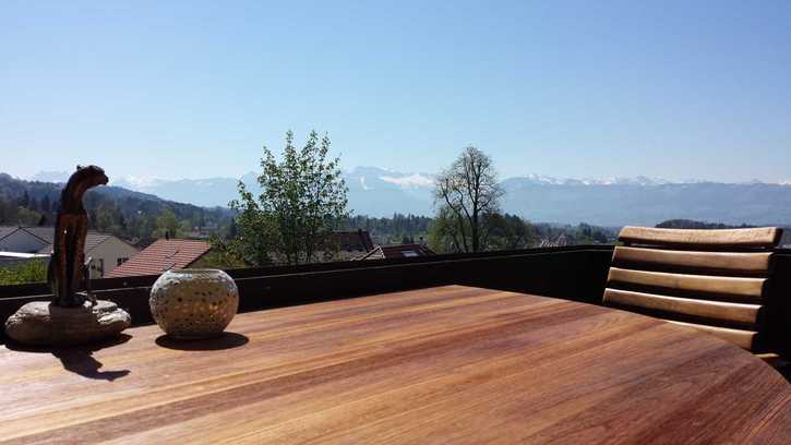 Möbliert mit toller Aussicht, Garage, Pool im Zürcher Oberland 3