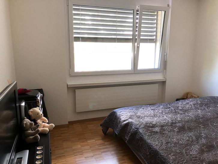 Nachmieter gesucht per 01.02018, für gemütliche 4,5-Zimmer-Wohnung in grüner Umgebung 4
