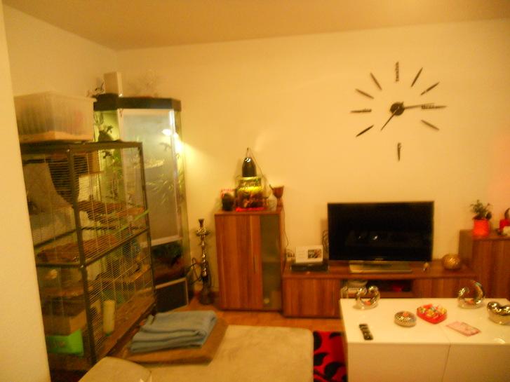 3 1/2 -Zimmerwohnung in Chur 4