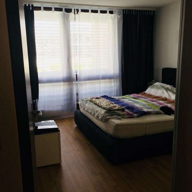 Nachmieter für grosse 3.5 Zimmer Wohnung gesucht 2
