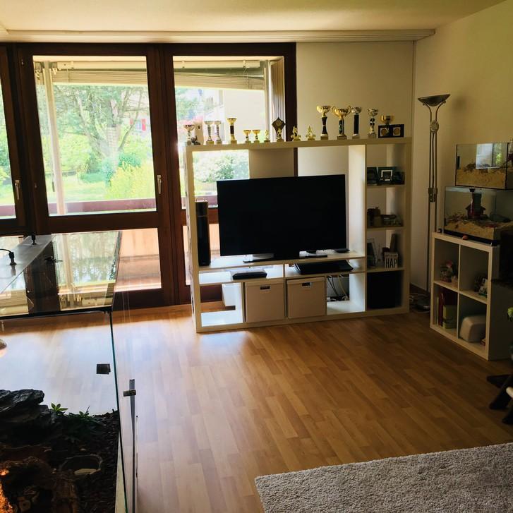 Nachmieter für grosse 3.5 Zimmer Wohnung gesucht 4