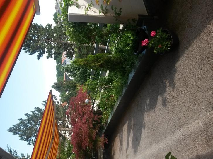 Wunderschöne und helle 3-Zimmer-Wohnung in bevorzugtem Besmerquartier 4