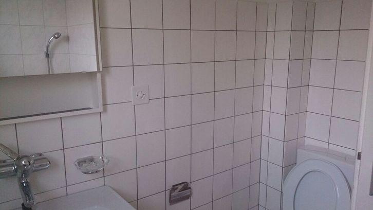 suche Nachmieter für gemütliche 2.5-Zimmer-Dachwohnung 4