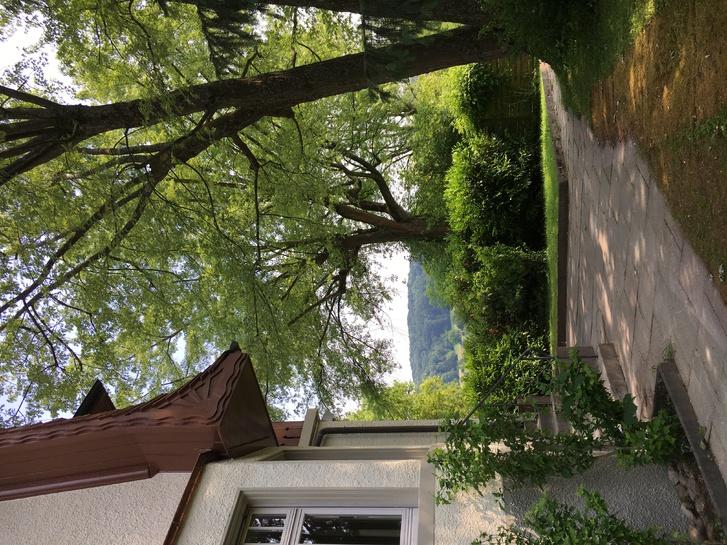 2.5 Zimmer Wohnung frisch renoviert mit Wintergarten und Garten 4125 Riehen