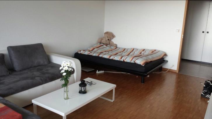 Helle 1.5 Zimmerwohnung in Bern - TEMPORÄR 3