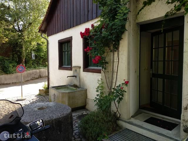 Wohnung mit Sauna, Fitnessraum und Riesengarten 8266 steckborn