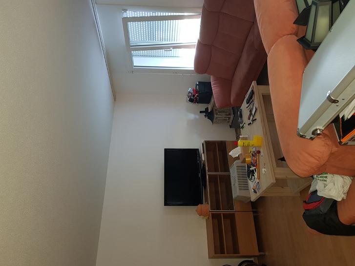 4.5 Zim. Wohnung in Bäretswil  3
