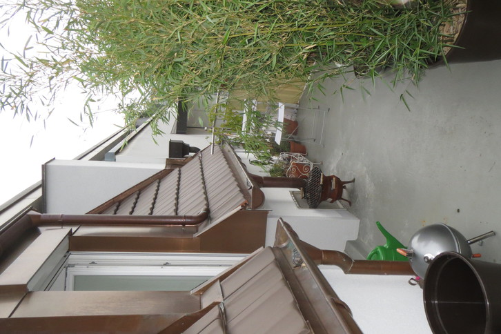4-Zimmer-Maisonette-Dachwohnung in Basel 4056 Basel