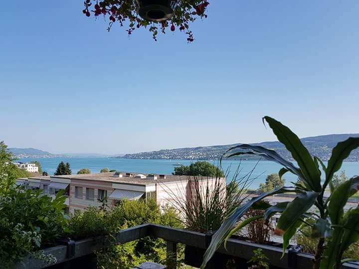 Schöne Wohnung mit Garten und Seesicht  8804 Au ZH