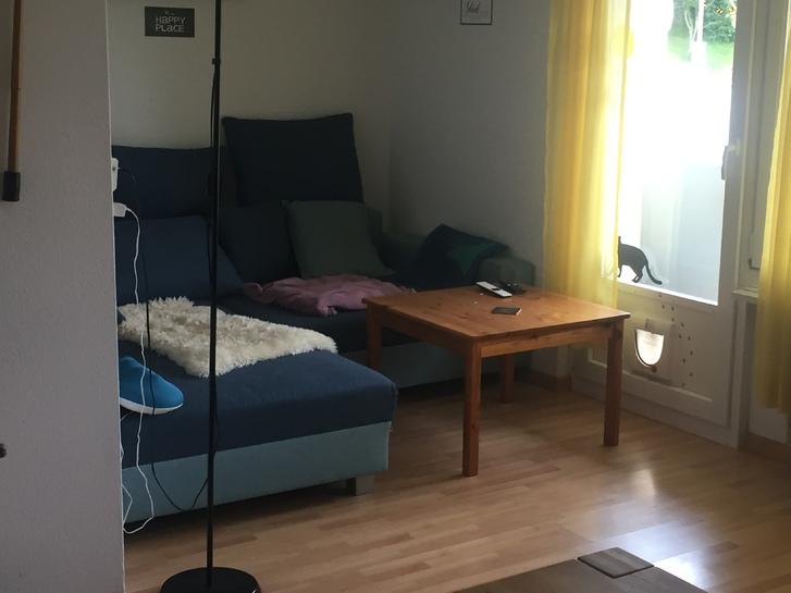 3 Zimmer Wohnung in Grossdiedwil LU 3