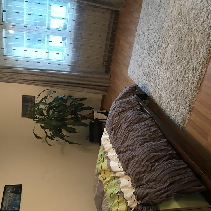 3.5-Zimmer-Wohnung in Freienstein 2