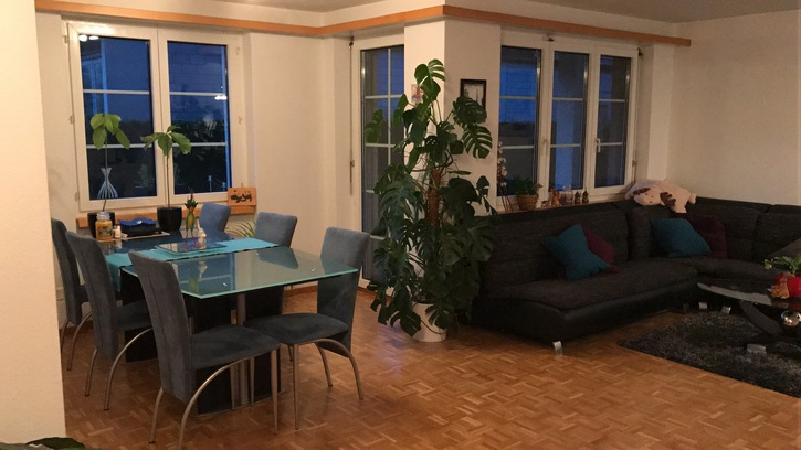 3.5-Zimmer-Wohnung in Freienstein 4