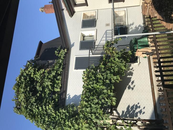 3 1/2 Wohnung / Hausteil 70m2 9606 Bütschwil