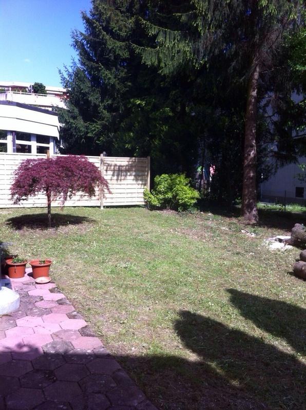 3.5 - Zimmerwohnung mit grossem Garten 3