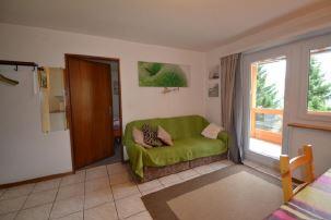 DIANA - helle gemütliche 2-Zimmerwohnung mit grossem Balkon 2
