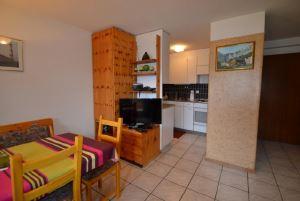DIANA - helle gemütliche 2-Zimmerwohnung mit grossem Balkon 3