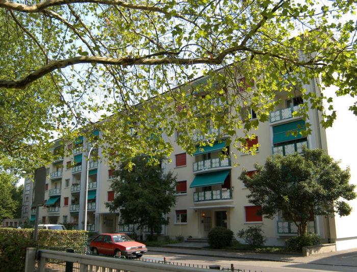 WG Mitbewohner gesucht 4055 Basel