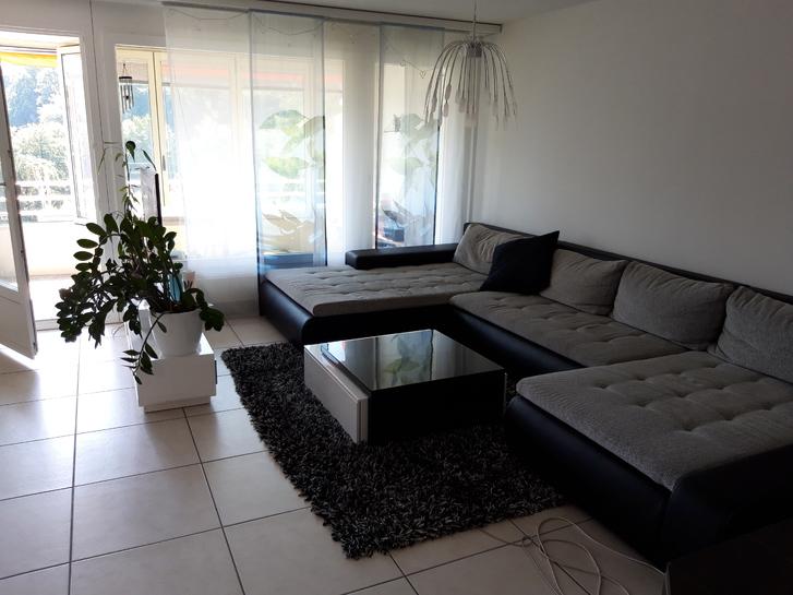 Sehr schöne helle 3.5-Zimmer Wohnung mit toller Aussicht auf die Berge 6020 Emmenbrücke