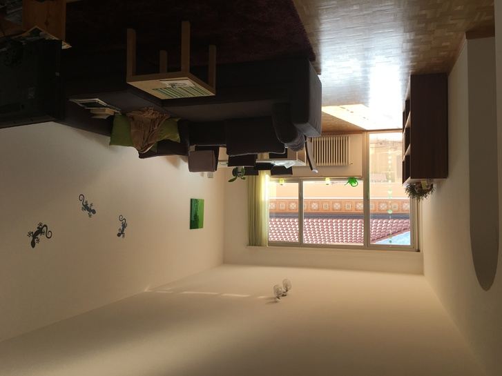 2.5 Zimmer Wohnung, grosszügig, hell 6612 Ascona