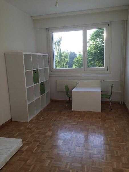 5,5 Zi-Wohnung in Greifensee mit Traumaussicht 2