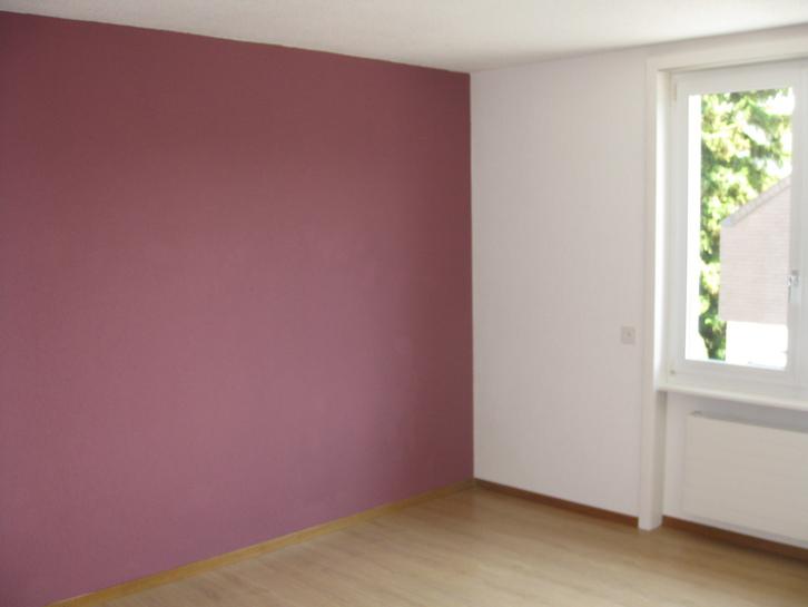 Grosse 2.5 Zimmer Wohnung mit Terrasse und Alpenblick 2