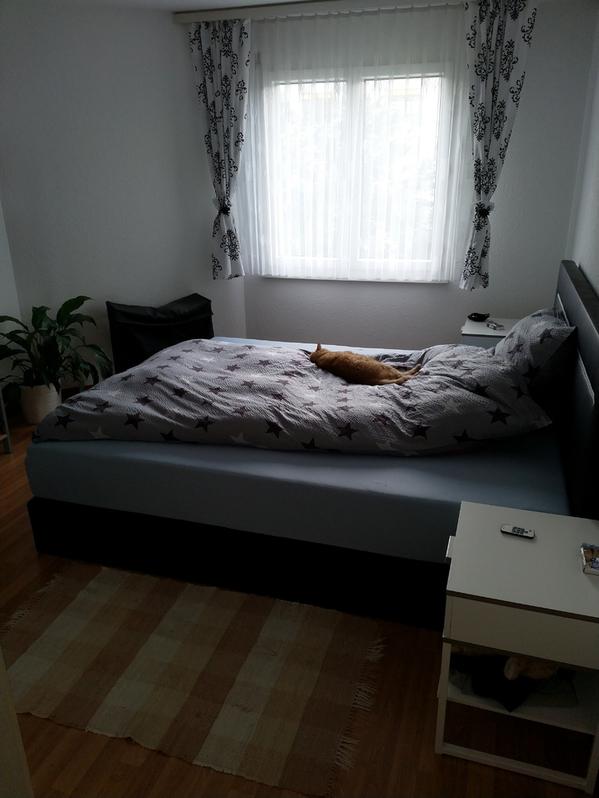 2,5 Zimmer Wohnung mit z 4