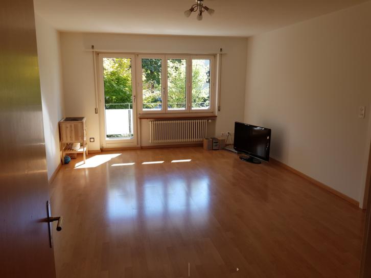 Helle 4 1/2 Zimmer Wohnung an ruhiger Lage 3