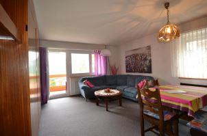Appartementhaus DIANA helle gemütliche 2.5-Zimmerwohnung mit schöner Aussicht 3