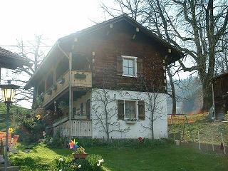 Chalet Haus in freier Natur 2