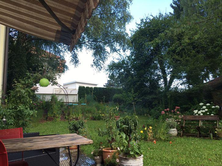 2 1/2 Zimmer Parterrewohnung mit Cheminee, Sitzplatz und grossem Garten 2