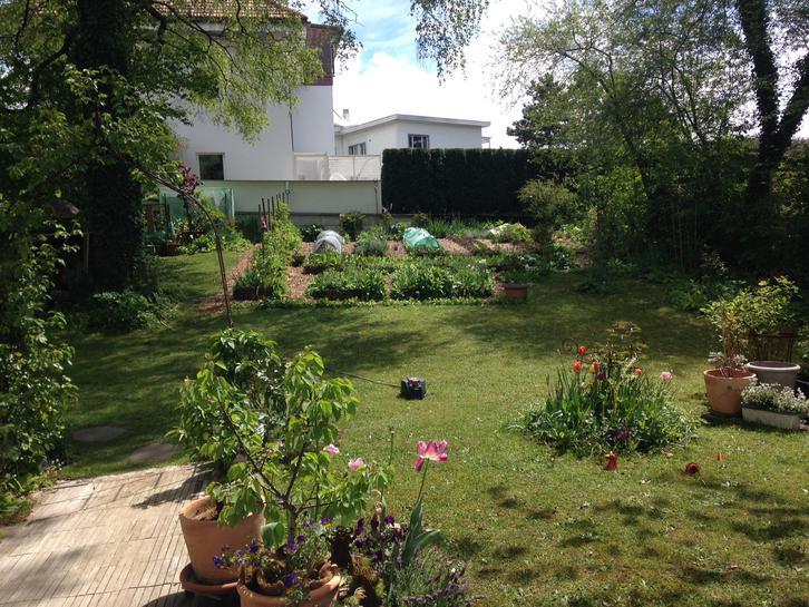 2 1/2 Zimmer Parterrewohnung mit Cheminee, Sitzplatz und grossem Garten 3